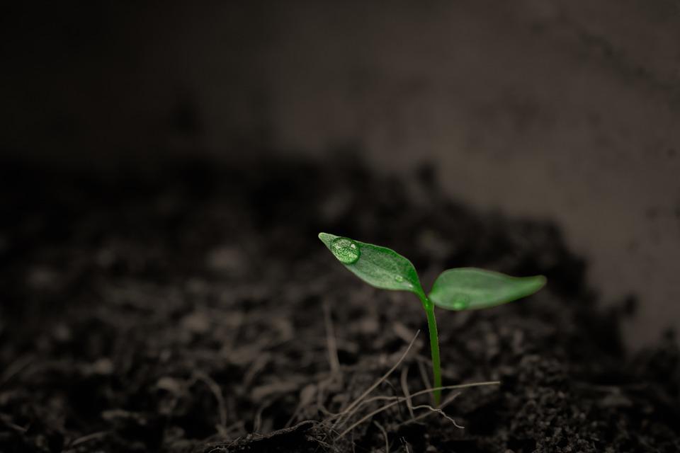 Badania gruntu są istotne dla wielu branży